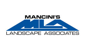 sponsor-mancini